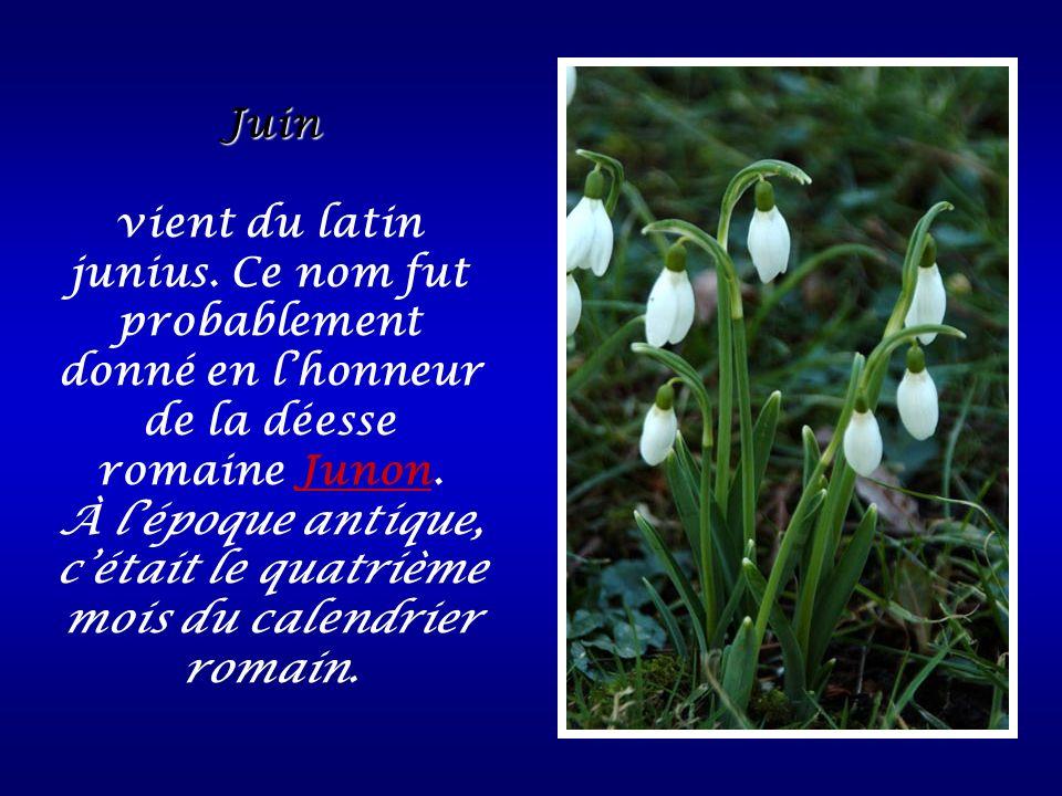 Juin vient du latin junius. Ce nom fut probablement donné en lhonneur de la déesse romaine Junon. À lépoque antique, cétait le quatrième mois du calen