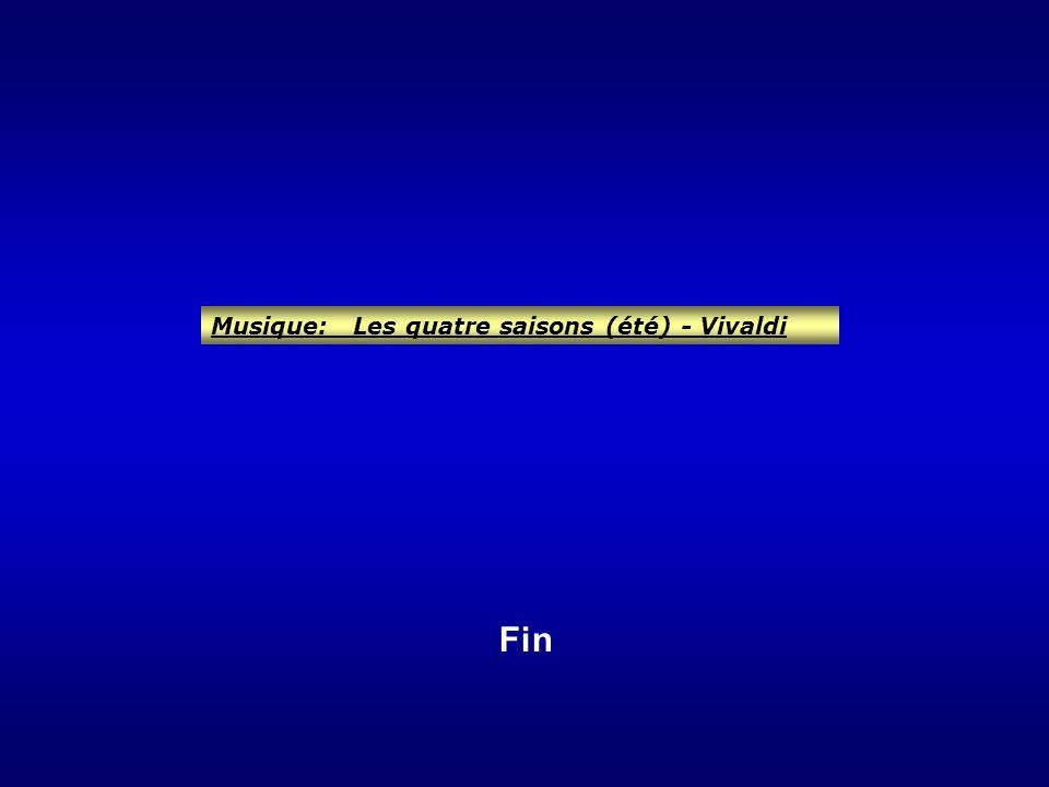 Musique: Les quatre saisons (été) - Vivaldi Fin