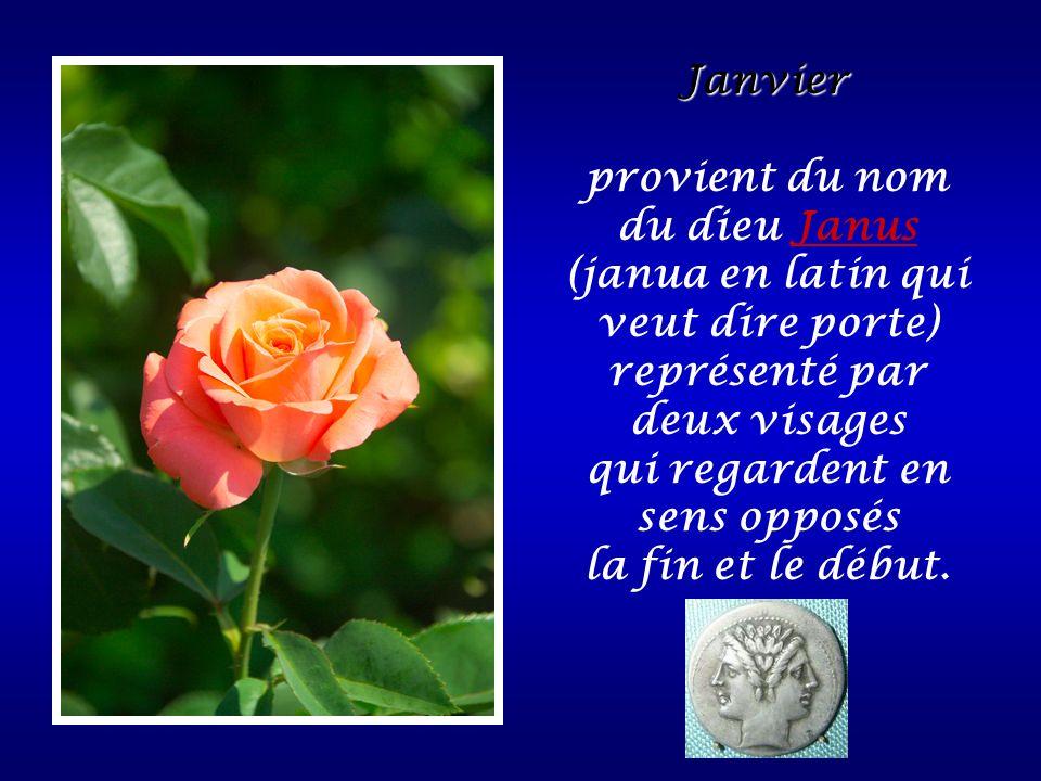 Janvier provient du nom du dieu Janus (janua en latin qui veut dire porte) représenté par deux visages qui regardent en sens opposés la fin et le débu