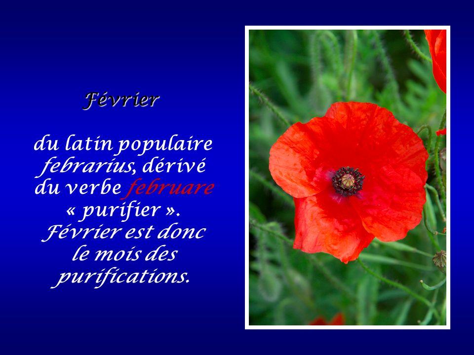 Février du latin populaire febrarius, dérivé du verbe februare « purifier ». Février est donc le mois des purifications.