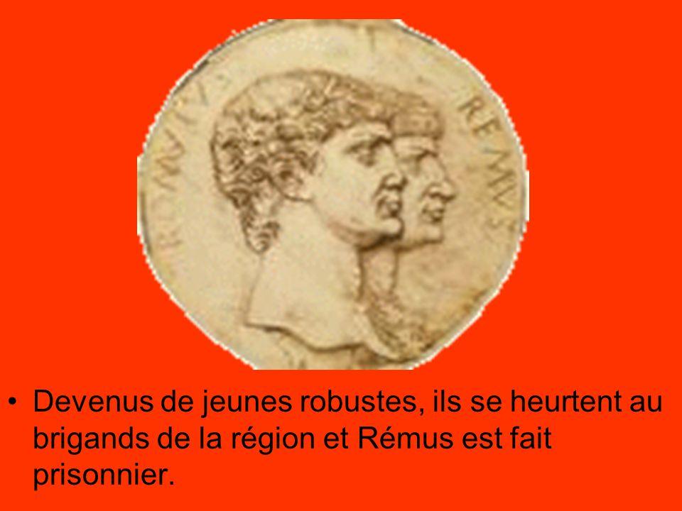 Devenus de jeunes robustes, ils se heurtent au brigands de la région et Rémus est fait prisonnier.