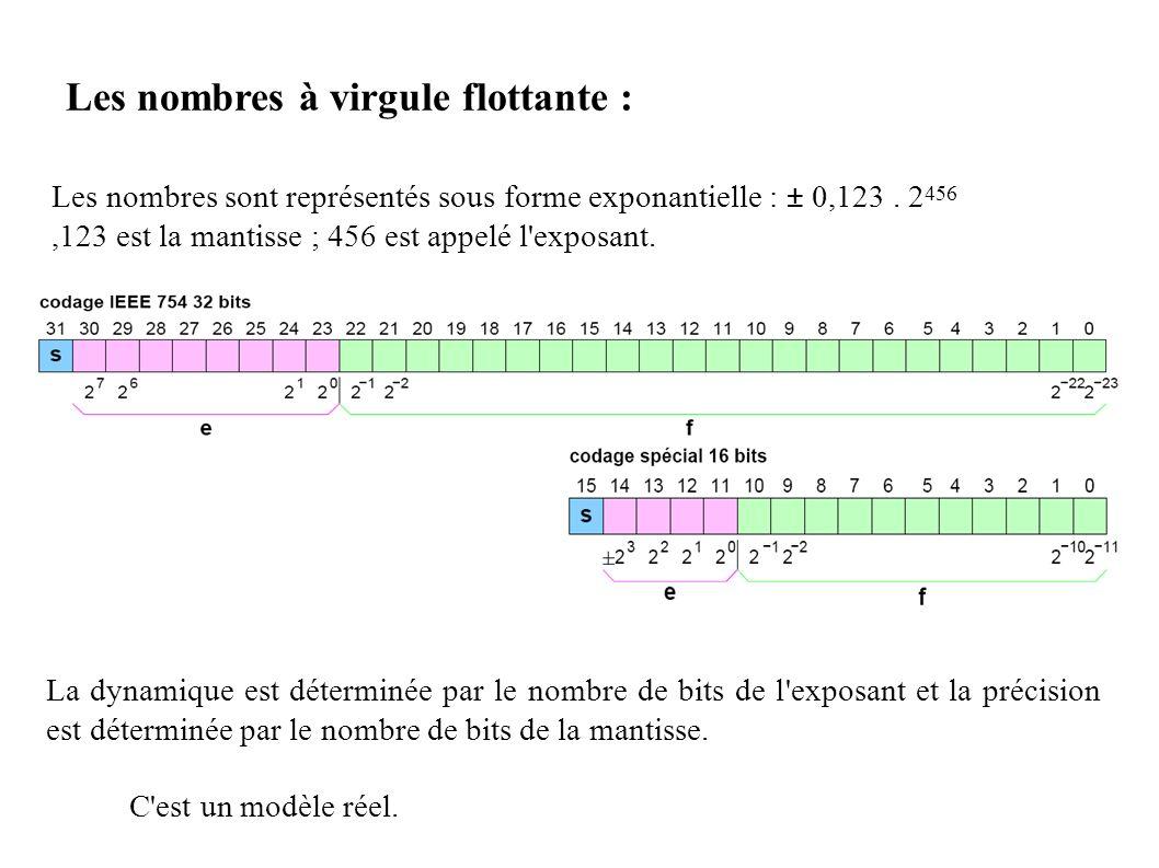 Les nombres sont représentés sous forme exponantielle : ± 0,123. 2 456,123 est la mantisse ; 456 est appelé l'exposant. La dynamique est déterminée pa