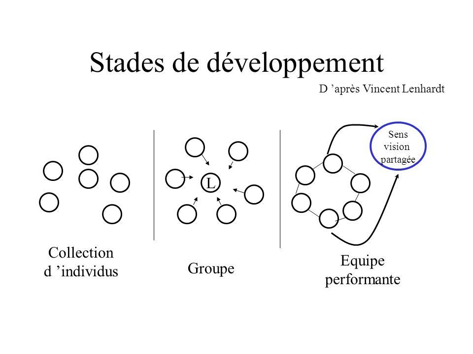 Stades de développement D après Vincent Lenhardt Collection d individus Groupe Equipe performante L Sens vision partagée