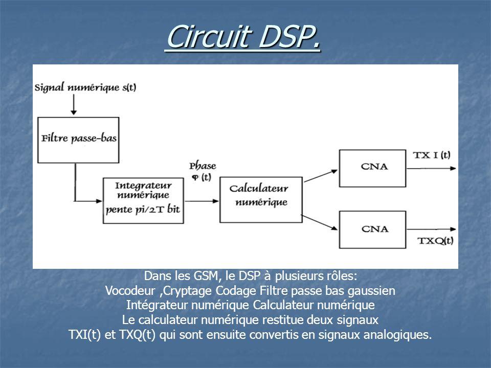 Circuit DSP.