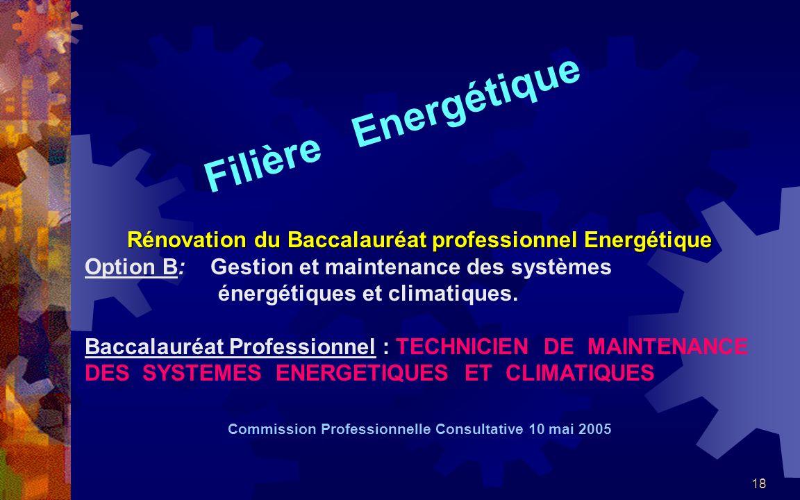 18 Filière Energétique Rénovation du Baccalauréat professionnel Energétique Option B: Gestion et maintenance des systèmes énergétiques et climatiques.