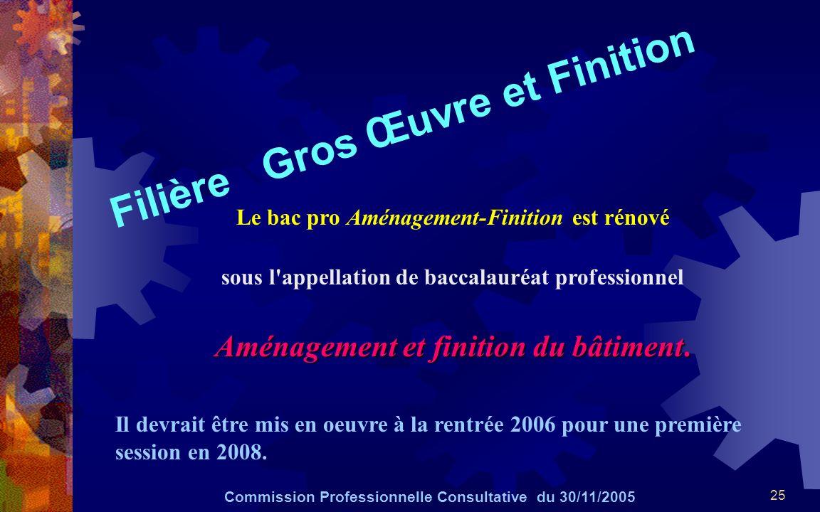 25 Filière Gros Œuvre et Finition Commission Professionnelle Consultative du 30/11/2005 Le bac pro Aménagement-Finition est rénové sous l'appellation