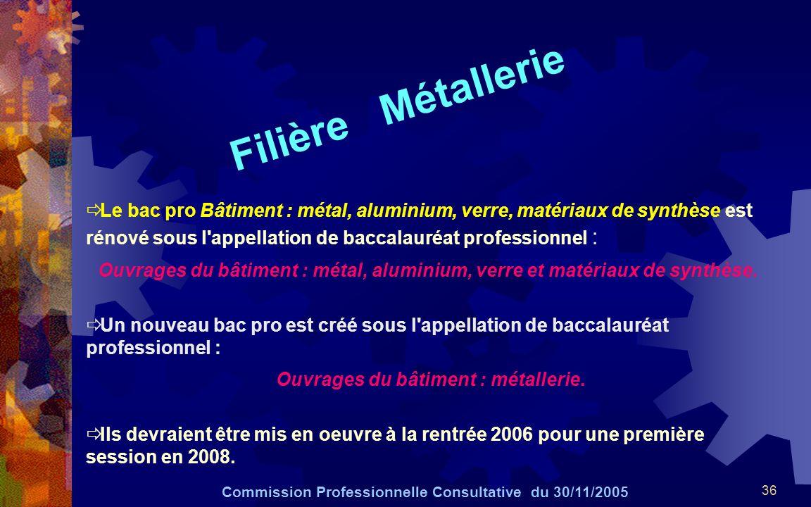 36 Filière Métallerie Commission Professionnelle Consultative du 30/11/2005 Le bac pro Bâtiment : métal, aluminium, verre, matériaux de synthèse est r