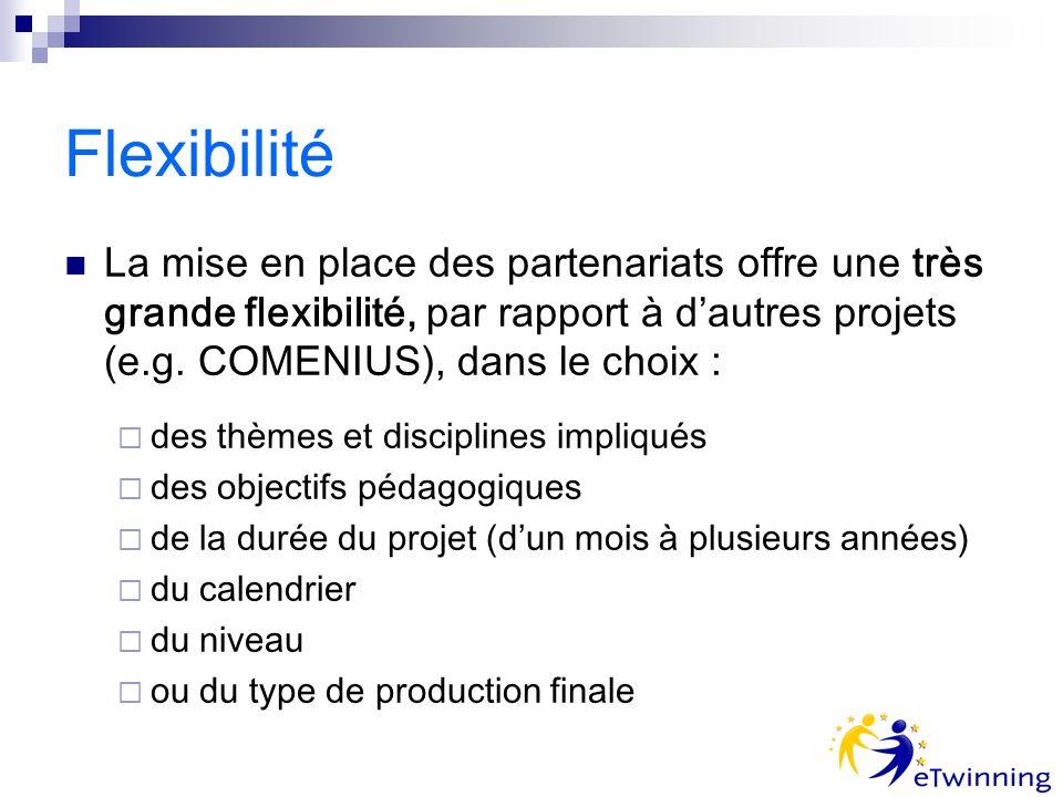 Flexibilité La mise en place des partenariats offre une très grande flexibilité, par rapport à dautres projets (e.g.
