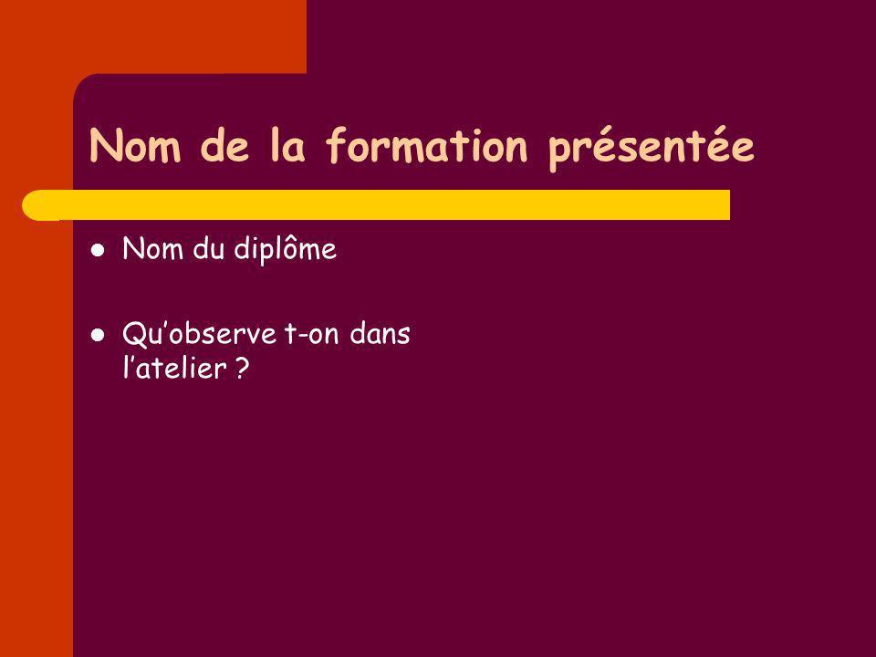 Nom de la formation présentée Nom du diplôme Quobserve t-on dans latelier ?