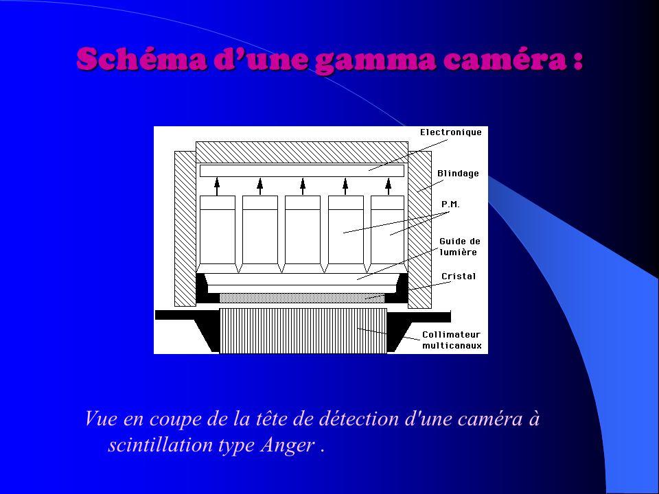 Schéma dune gamma caméra : Vue en coupe de la tête de détection d une caméra à scintillation type Anger.