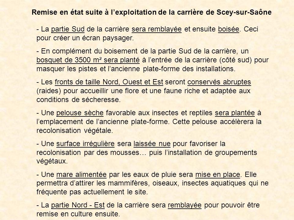 Remise en état suite à lexploitation de la carrière de Scey-sur-Saône - La partie Sud de la carrière sera remblayée et ensuite boisée. Ceci pour créer