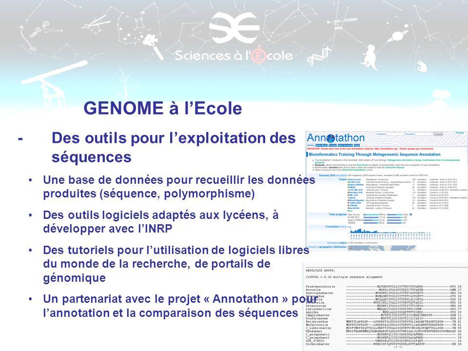 GENOME à lEcole - Des outils pour lexploitation des séquences Une base de données pour recueillir les données produites (séquence, polymorphisme) Des