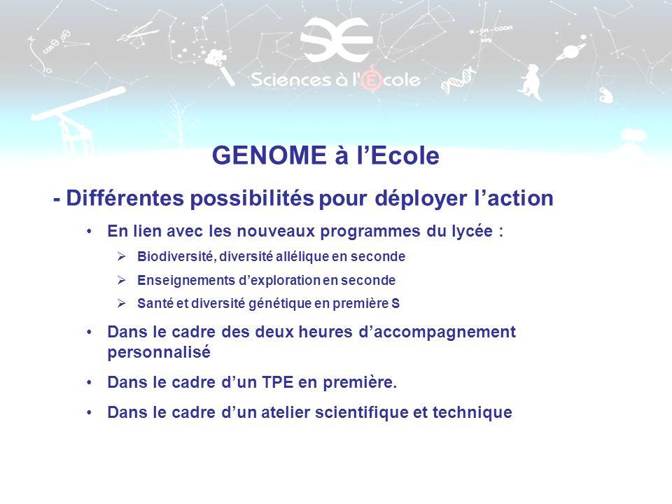 GENOME à lEcole - Différentes possibilités pour déployer laction En lien avec les nouveaux programmes du lycée : Biodiversité, diversité allélique en