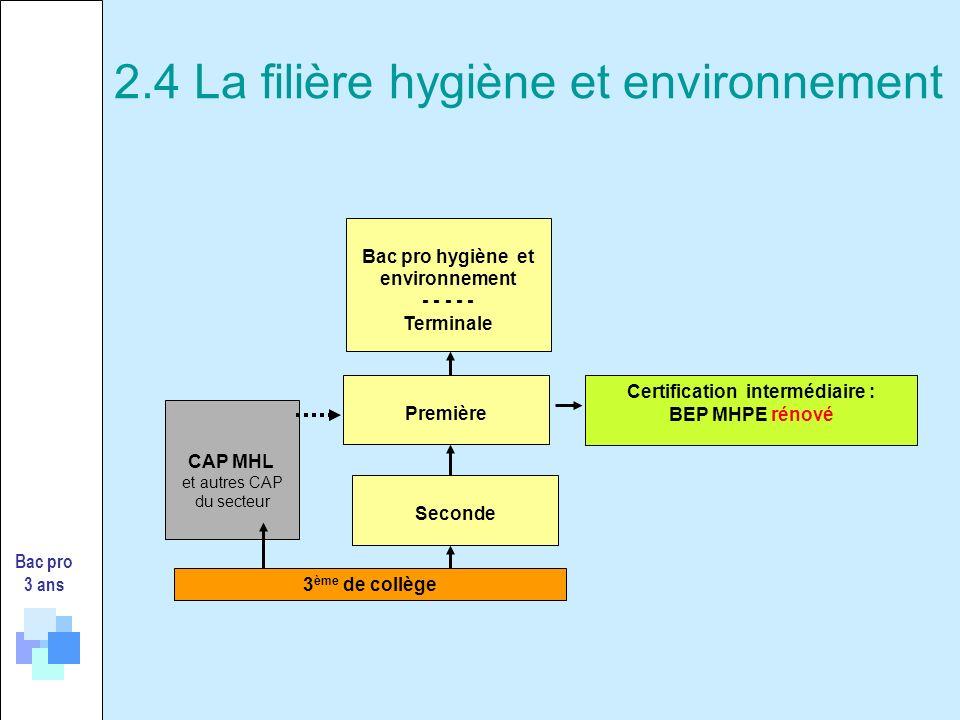 Bac pro 3 ans 3 ème de collège Certification intermédiaire : BEP MHPE rénové Seconde Première Bac pro hygiène et environnement - - - - - Terminale CAP