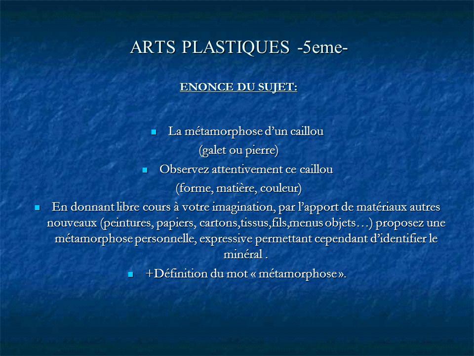ARTS PLASTIQUES -5eme- ENONCE DU SUJET: La métamorphose dun caillou La métamorphose dun caillou (galet ou pierre) (galet ou pierre) Observez attentive