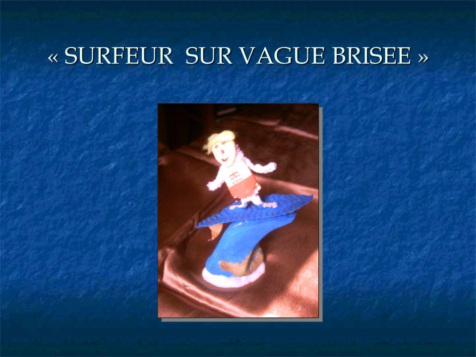 « SURFEUR SUR VAGUE BRISEE »