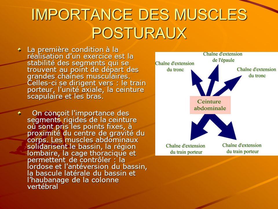 IMPORTANCE DES MUSCLES POSTURAUX La première condition à la réalisation d'un exercice est la stabilité des segments qui se trouvent au point de départ