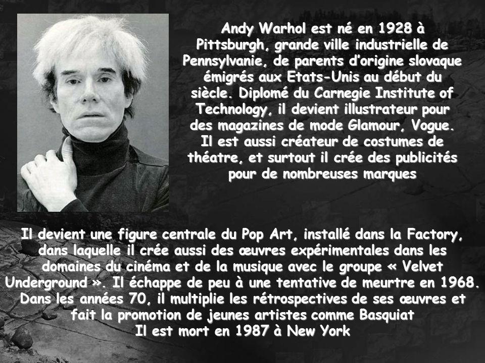Il devient une figure centrale du Pop Art, installé dans la Factory, dans laquelle il crée aussi des œuvres expérimentales dans les domaines du cinéma