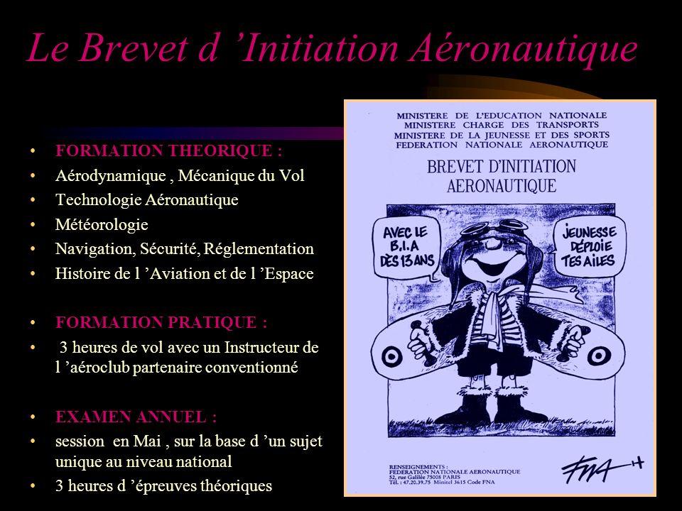 Le Brevet d Initiation Aéronautique FORMATION THEORIQUE : Aérodynamique, Mécanique du Vol Technologie Aéronautique Météorologie Navigation, Sécurité,