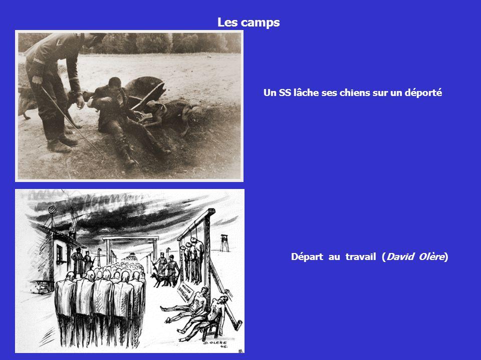 Les camps Un SS lâche ses chiens sur un déporté Départ au travail (David Olère)