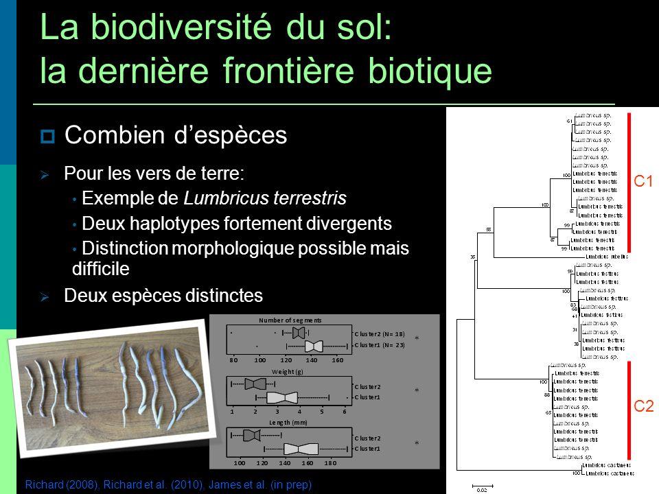 Combien despèces Pour les vers de terre: Exemple de Lumbricus terrestris Deux haplotypes fortement divergents Distinction morphologique possible mais