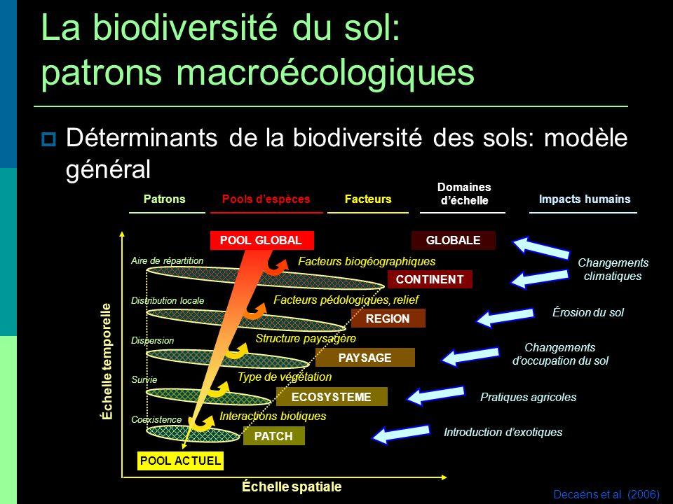 Déterminants de la biodiversité des sols: modèle général Échelle temporelle Échelle spatiale Impacts humains Changements climatiques Érosion du sol Ch