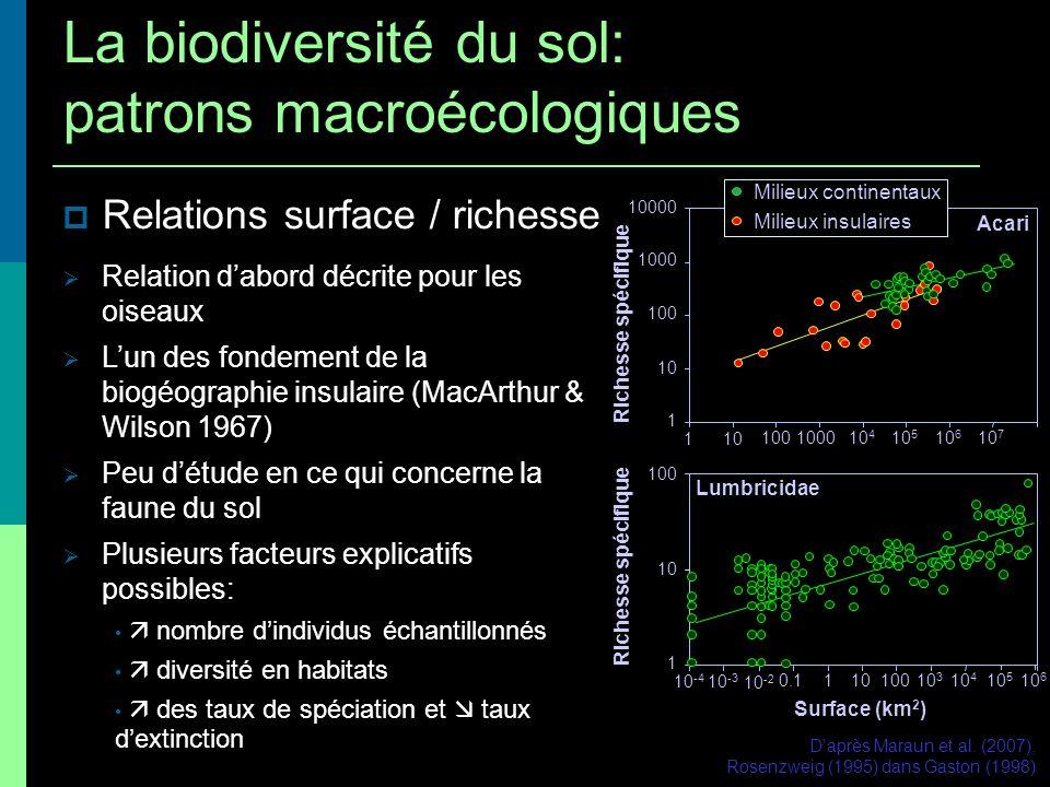 Relations surface / richesse Relation dabord décrite pour les oiseaux Lun des fondement de la biogéographie insulaire (MacArthur & Wilson 1967) Peu dé