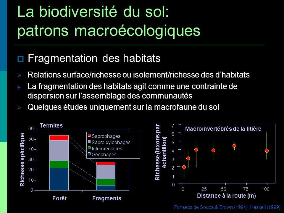 0 10 20 30 40 50 60 ForêtFragments Richesse spécifique Saprophages Sapro-xylophages Intermédiaires Géophages Termites Fragmentation des habitats Fonse