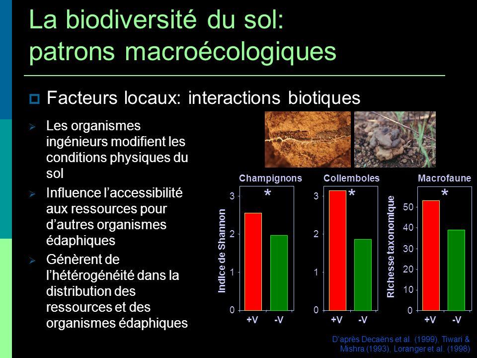 Facteurs locaux: interactions biotiques Daprès Decaëns et al. (1999), Tiwari & Mishra (1993), Loranger et al. (1998) 0 10 20 30 40 50 +V -V Richesse t