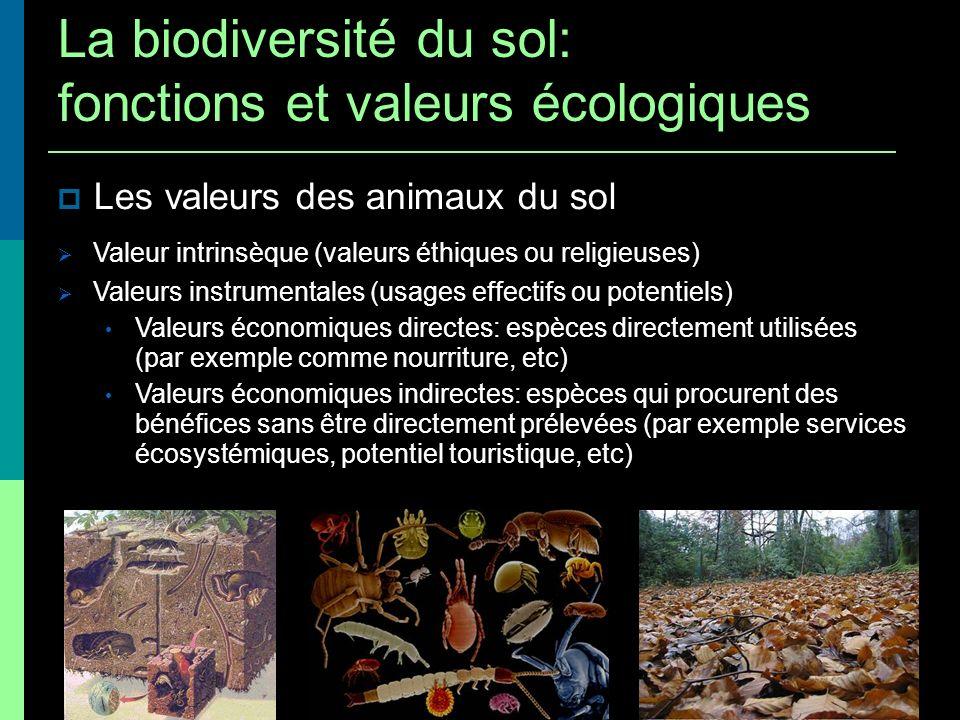 Les valeurs des animaux du sol Valeur intrinsèque (valeurs éthiques ou religieuses) Valeurs instrumentales (usages effectifs ou potentiels) Valeurs éc