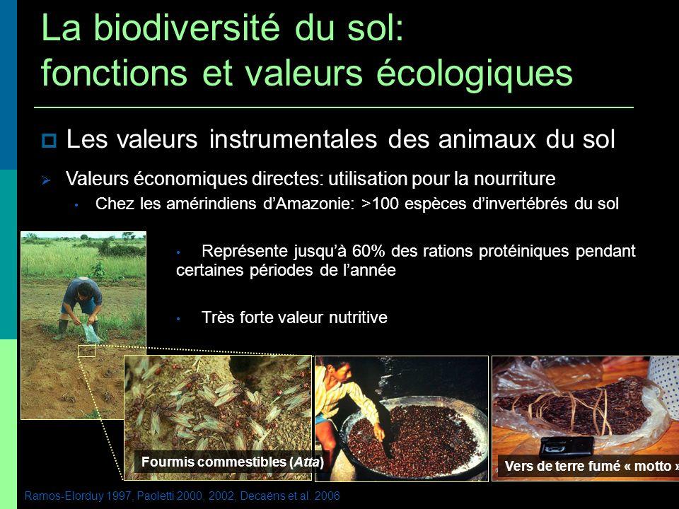 Les valeurs instrumentales des animaux du sol Valeurs économiques directes: utilisation pour la nourriture Chez les amérindiens dAmazonie: >100 espèce