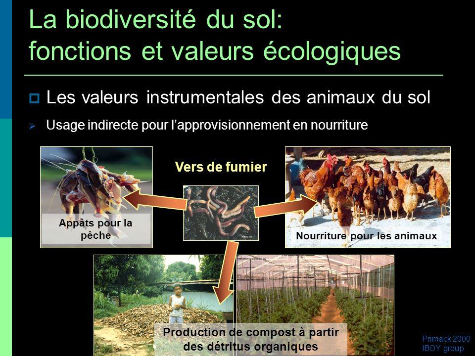 Les valeurs instrumentales des animaux du sol Usage indirecte pour lapprovisionnement en nourriture Vers de fumier Primack 2000 IBOY group Appâts pour