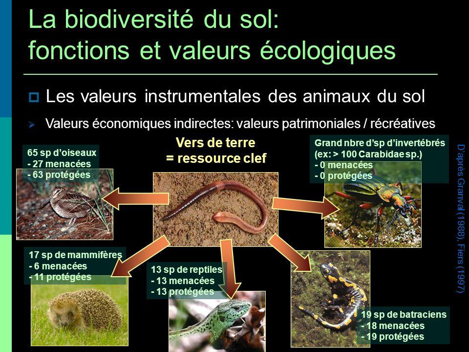 Les valeurs instrumentales des animaux du sol Valeurs économiques indirectes: valeurs patrimoniales / récréatives Vers de terre = ressource clef Daprè