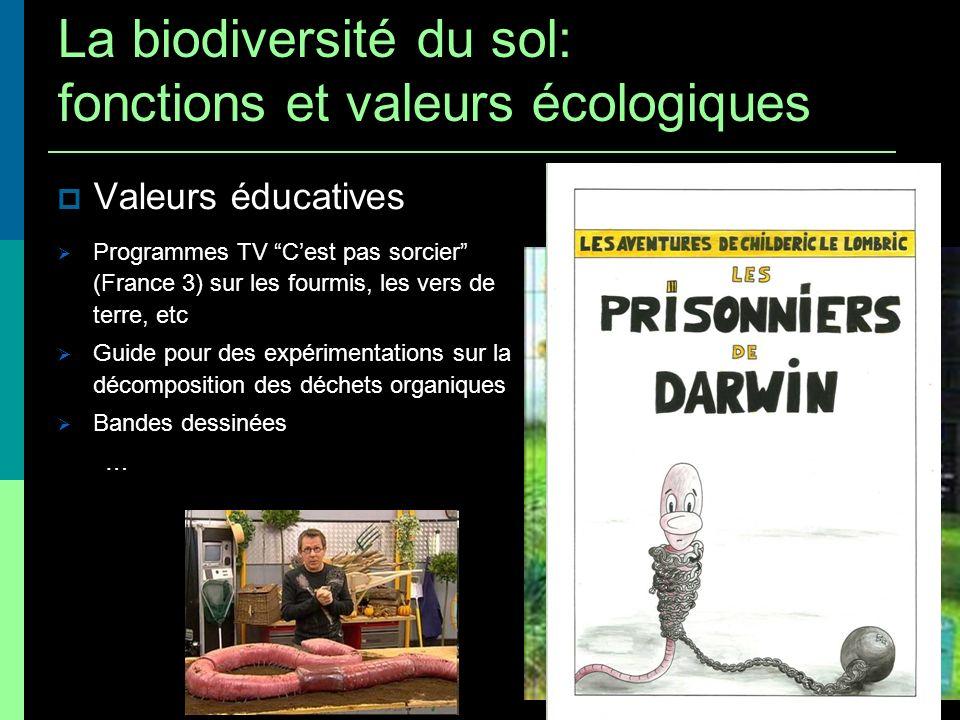 Valeurs éducatives Programmes TV Cest pas sorcier (France 3) sur les fourmis, les vers de terre, etc Guide pour des expérimentations sur la décomposit