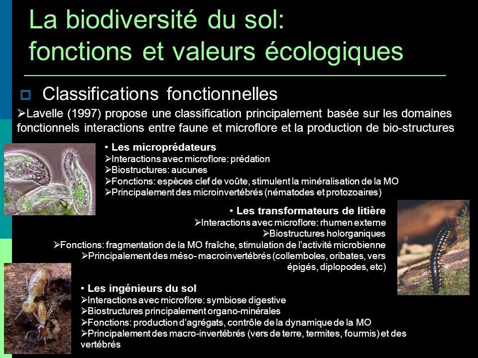 Classifications fonctionnelles Lavelle (1997) propose une classification principalement basée sur les domaines fonctionnels interactions entre faune e
