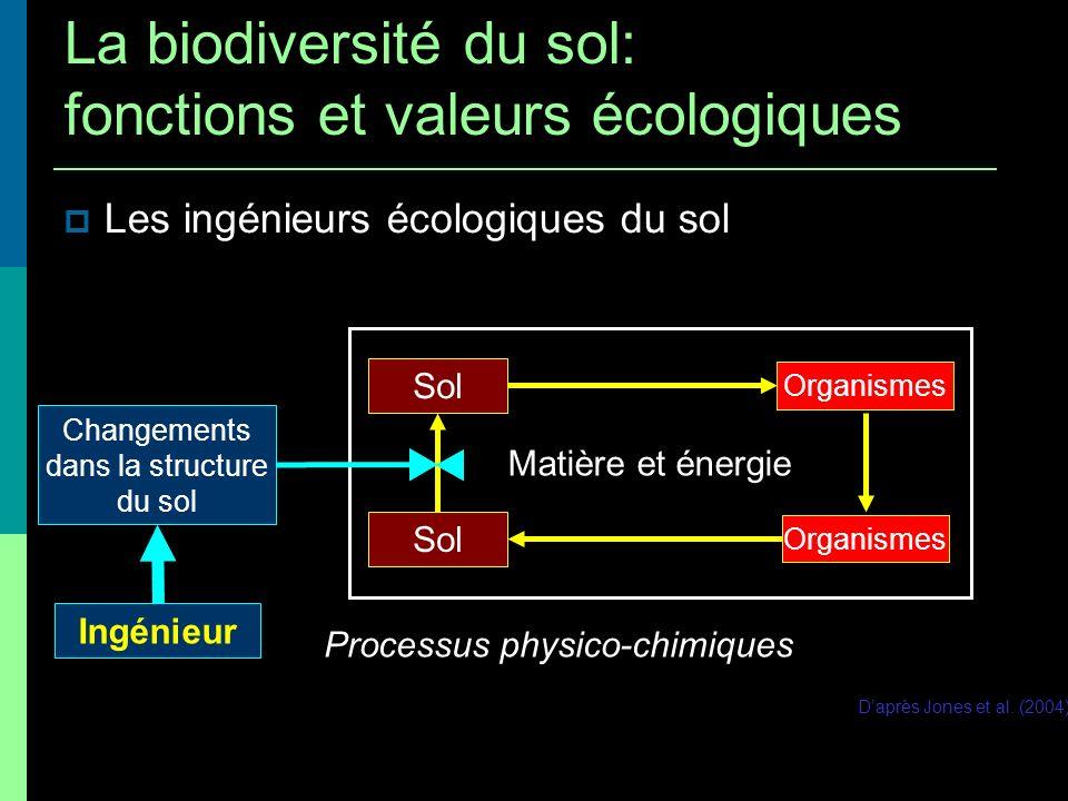 Organismes Sol Organismes Sol Matière et énergie Daprès Jones et al. (2004) Processus physico-chimiques Ingénieur Les ingénieurs écologiques du sol La