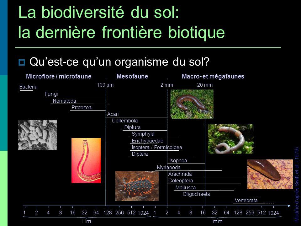 1 m 2 1000 espèces dinvertébrés: 400 – 500 Acariens 60 – 80 Collemboles 90 Nématodes 60 Protozoaires 20 – 30 Enchytraeidae 10 – 12 Lumbricidae 15 Diplopodes etc Torsvick et al.