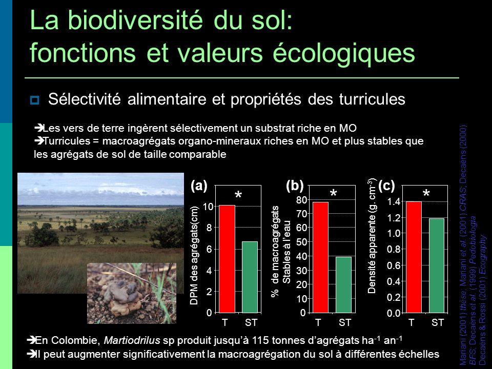 Sélectivité alimentaire et propriétés des turricules En Colombie, Martiodrilus sp produit jusquà 115 tonnes dagrégats ha -1 an -1 Il peut augmenter si