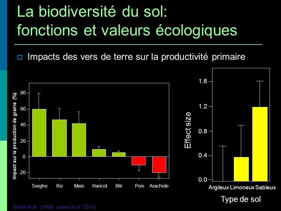 Impacts des vers de terre sur la productivité primaire 80 60 40 20 0 -20 SorghoRizMaïsHaricotBléPoisArachide Impact sur la production de grains (%) Br