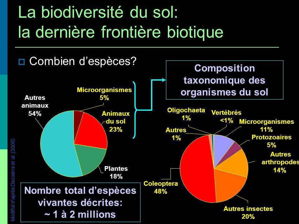 Combien despèces Connaissance taxonomique souvent faible Dautant plus faible que les organismes sont de petite taille R 2 = 0,41 0 10 20 30 40 50 60 70 80 90 1 m100 m10mm1m Taille corporelle moyenne % despèces décrites / diversité estimée Modifié daprès Decaëns et al.
