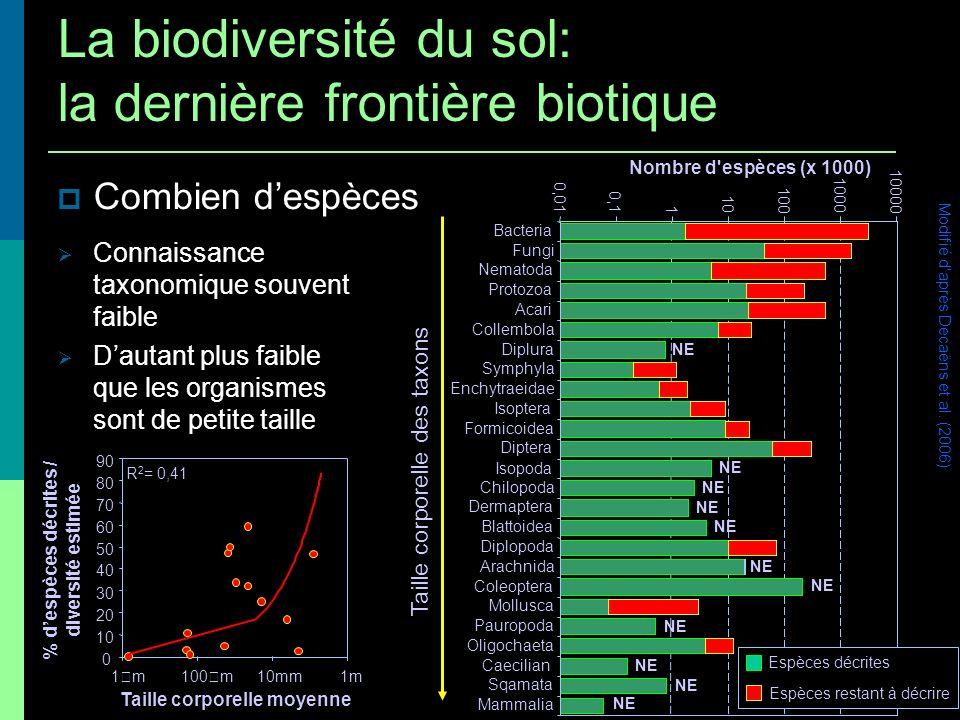 Combien despèces Connaissance taxonomique souvent faible Dautant plus faible que les organismes sont de petite taille R 2 = 0,41 0 10 20 30 40 50 60 7