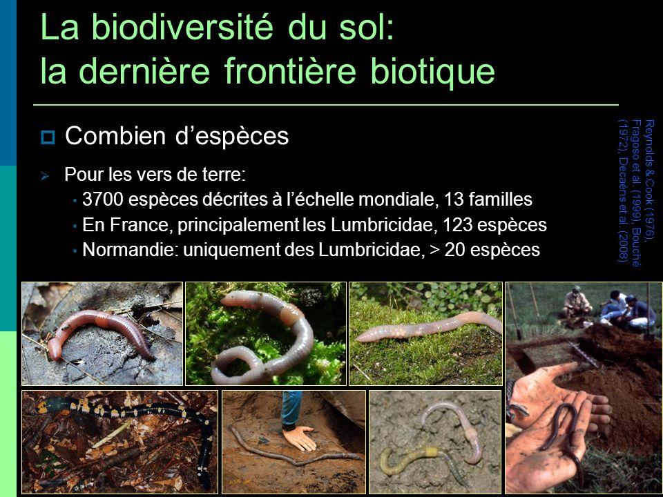 Combien despèces Pour les vers de terre: 3700 espèces décrites à léchelle mondiale, 13 familles En France, principalement les Lumbricidae, 123 espèces