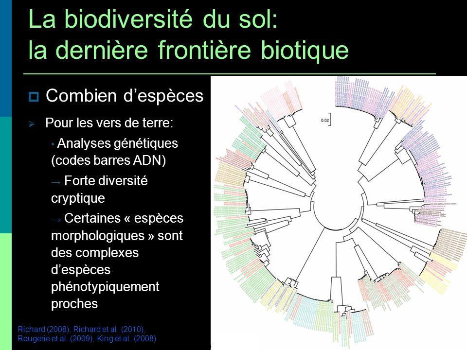 Combien despèces Pour les vers de terre: Analyses génétiques (codes barres ADN) Forte diversité cryptique Certaines « espèces morphologiques » sont de