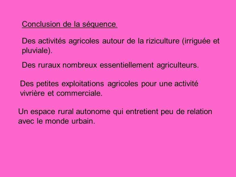 Conclusion de la séquence. Des activités agricoles autour de la riziculture (irriguée et pluviale). Des ruraux nombreux essentiellement agriculteurs.