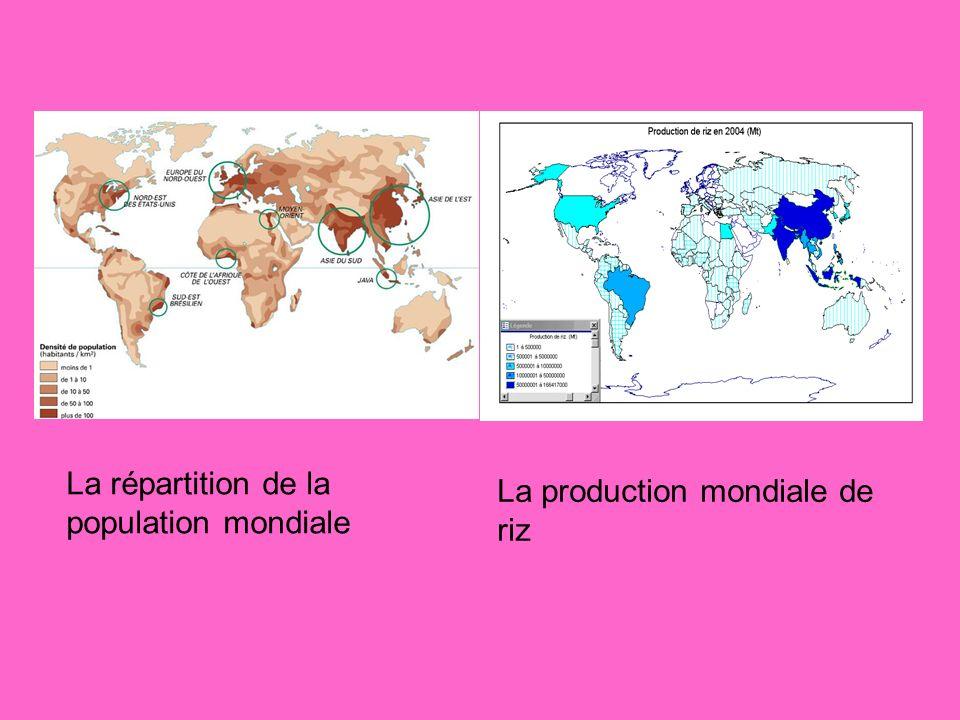 La répartition de la population mondiale La production mondiale de riz