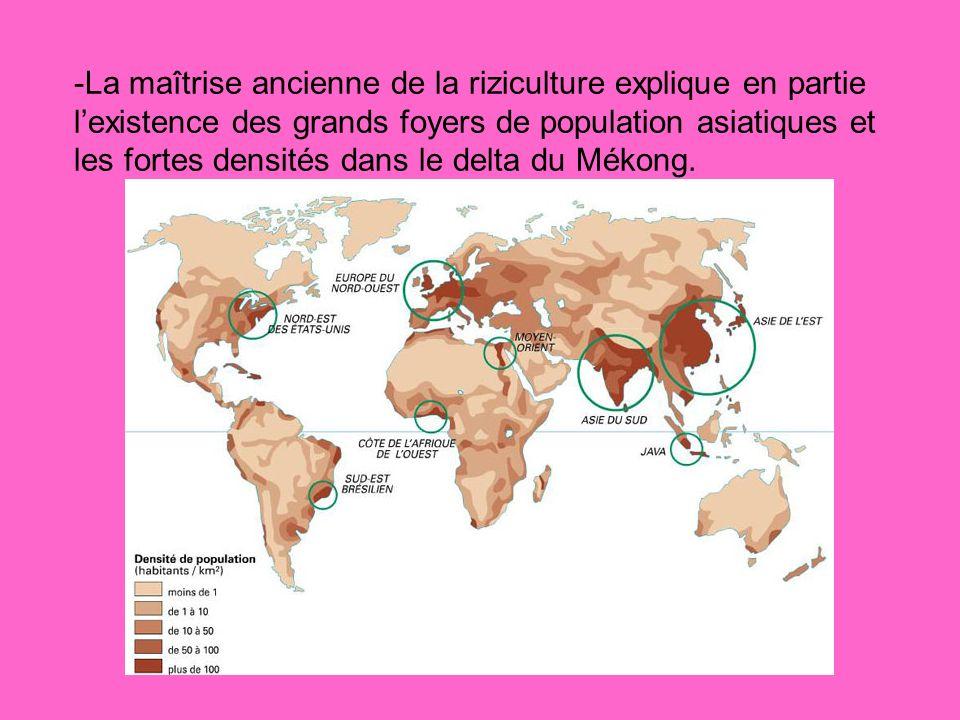 -La maîtrise ancienne de la riziculture explique en partie lexistence des grands foyers de population asiatiques et les fortes densités dans le delta