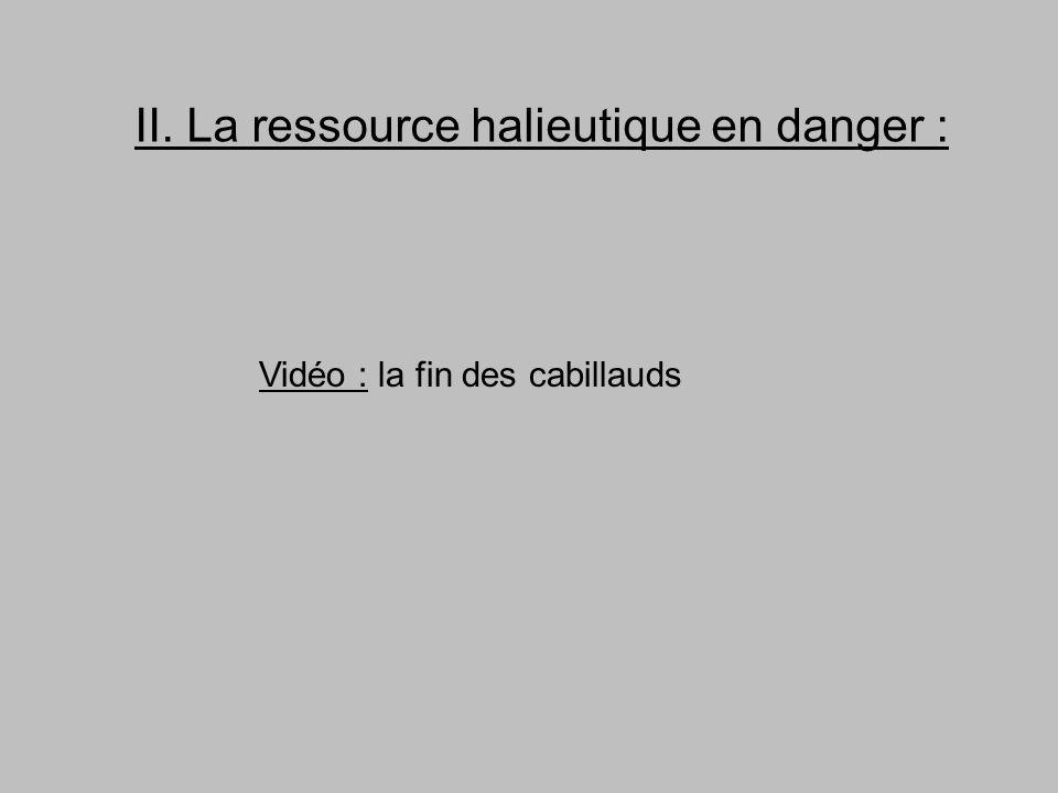 II. La ressource halieutique en danger : Vidéo : la fin des cabillauds