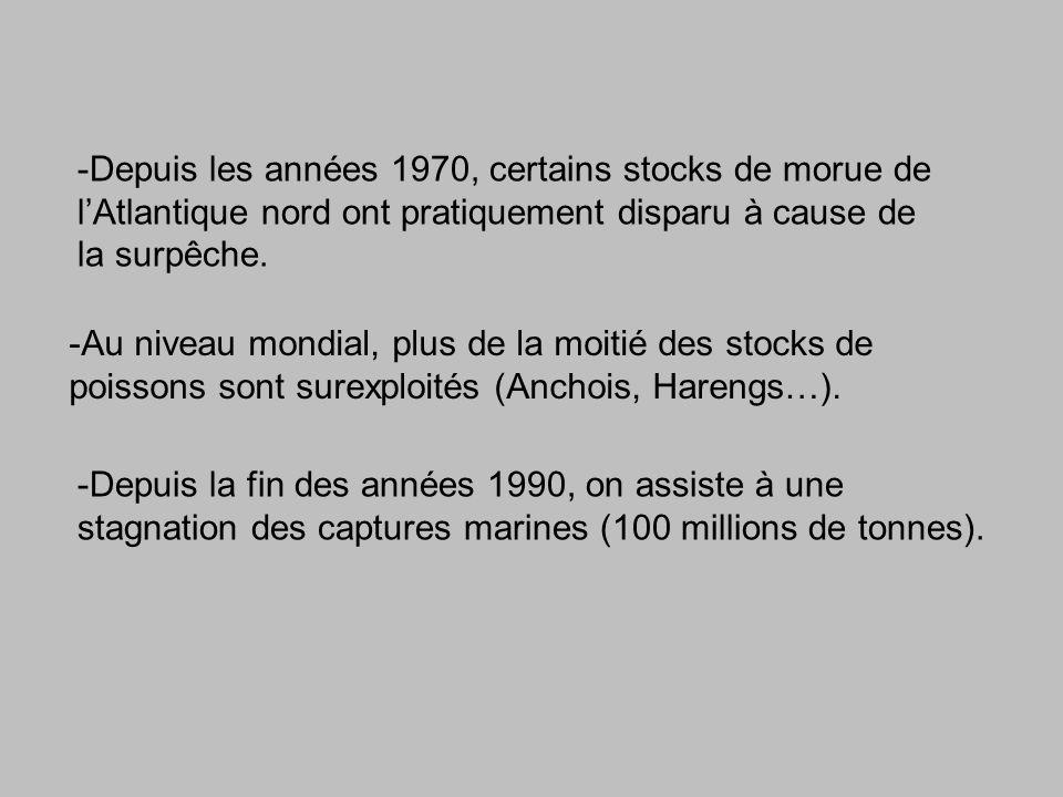 -Depuis les années 1970, certains stocks de morue de lAtlantique nord ont pratiquement disparu à cause de la surpêche.