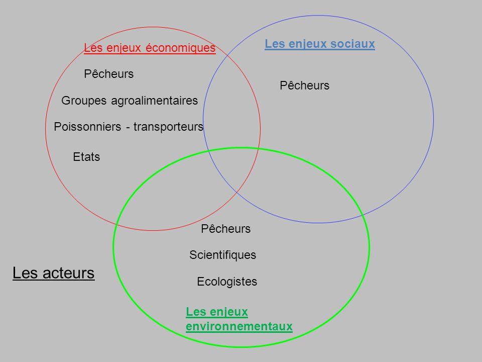 Les enjeux économiques Les enjeux sociaux Les enjeux environnementaux Pêcheurs Ecologistes Groupes agroalimentaires Pêcheurs Etats Scientifiques Les acteurs Pêcheurs Poissonniers - transporteurs