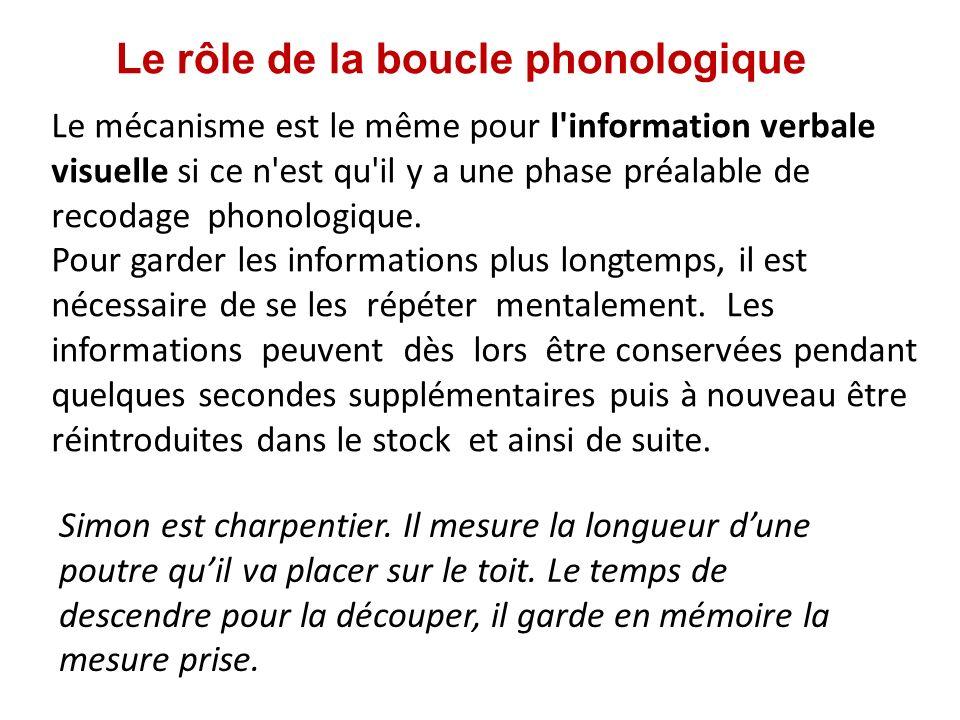 Le rôle de la boucle phonologique Le mécanisme est le même pour l'information verbale visuelle si ce n'est qu'il y a une phase préalable de recodage p